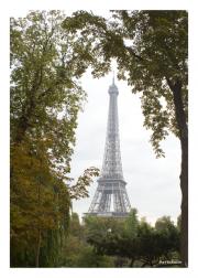 Eiffel Tower from Jardins du Trocadéro