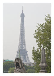 Eiffel Tower and Lion