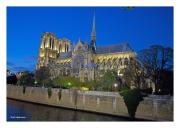 Lights of Notre Dame