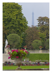 Luxembourg Gardens with Eiffel Tower