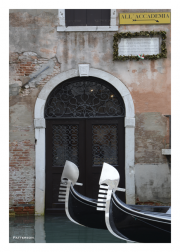 Venice - Neck and Neck