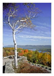 View from Fort Ticonderoga in Fall
