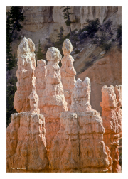 Bryce Canyon rock pillars