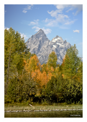 Autumn at Grand Teton