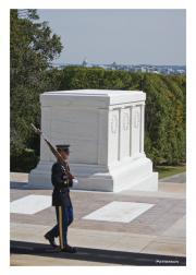 Arlington Cemetery - Lone Sentinal