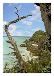 Bermuda Shoreline