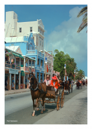 Buggy Ride in Hamilton, Bermuda