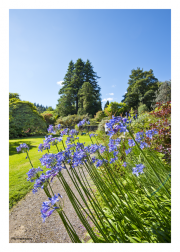 Gardens at Armadale Castle