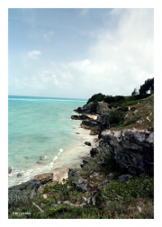 Bermuda's Shore