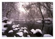 Stream in the Snow