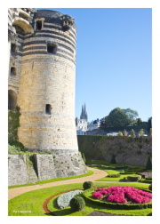 Chateau de Angers Tower & Moat