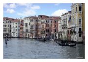 Quintessential Venice