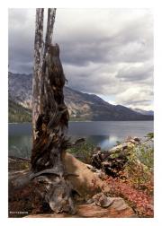 Jackson Lake in Grand Teton