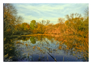 Fall at Heinz Wildlife Refuge