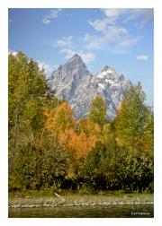 Autumn at Grand Teton