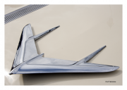 Flying Wing Hood Ornament