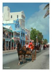 Buggy Ride in Hamilton, Bermuda