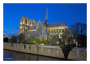 Lights of Notre Dame