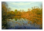 Fall at Heinz Wildlife Refuge