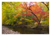 Darby Creek Fall 3