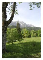 Grounds of Schloss Linderhof