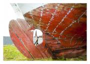 Old Boat Keel