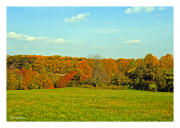 Valley Forge in Autumn