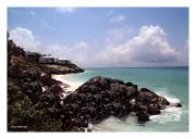 Along Bermuda's Coast